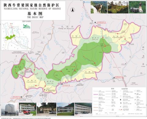【中国青年报刘学红】_习近平陕西行丨首站探访牛背梁国家级自然保护区
