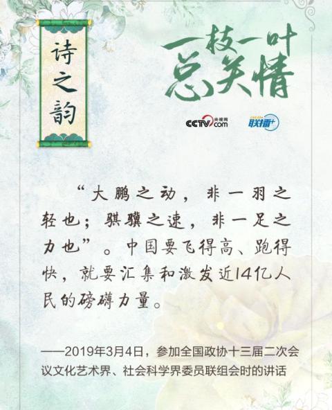 【张坤中国青年报】_联播+ | 一枝一叶总关情·诗之韵