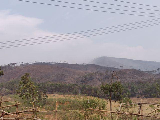 森林火灾遇难19人遭遇飞火切断退路